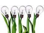 innovation_light_bulbs.jpg